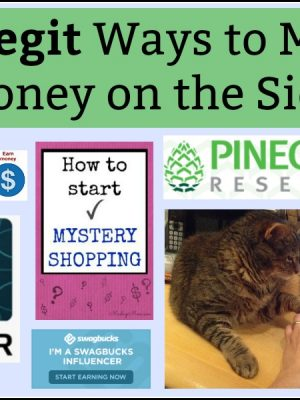 50 Legit Ways to Make Money on the Side