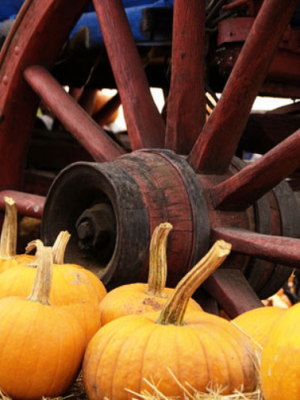 20% off at LivingSocial = Savings on fall activities!