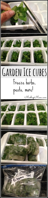 garden-ice-cubes-freeze-herbs-pesto-more