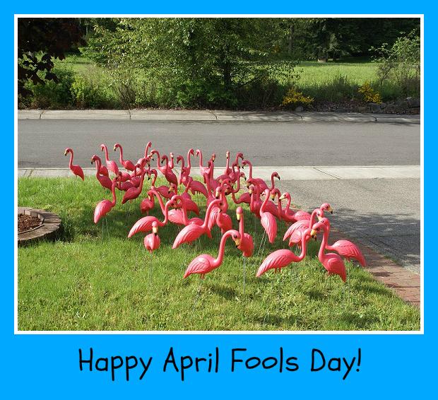 flamingo prank