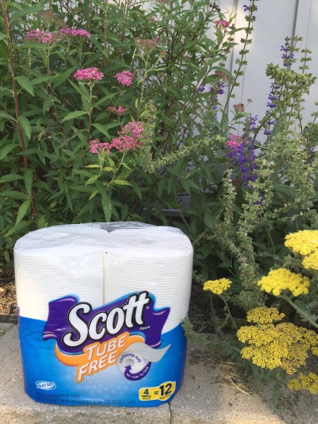 scott-tube-free-tp-in-bee-garden