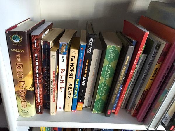 kids books on a shelf