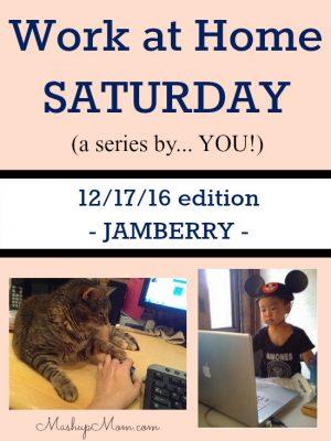 Work at Home Saturday 12/17/16 — Jamberry
