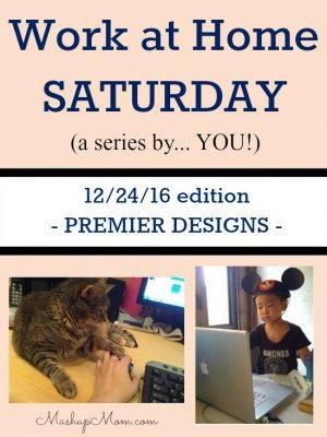 Work at Home Saturday 12/24/16 — Premier Designs