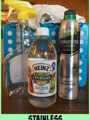 Make It Or Buy It: DIY Stainless Steel Refrigerator Cleaner