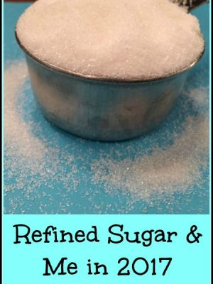 Refined Sugar and Me Week 14 — Hey! I don't want dessert!