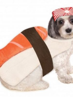 Quirky Finds 6/20/17 — Sushi Dog Costume