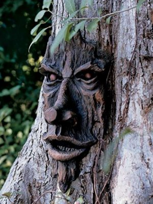 Quirky Finds 8/20/17 — Creepy Tree Face