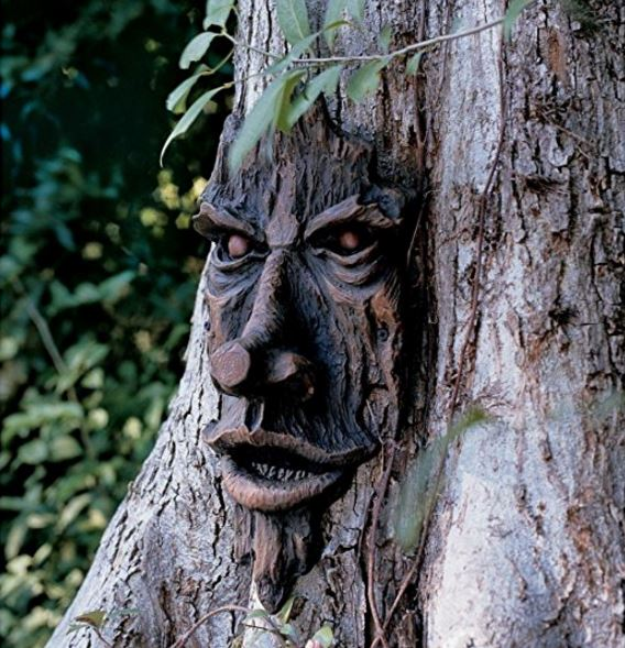 Quirky Finds 8/20/17 -- Creepy Tree Face