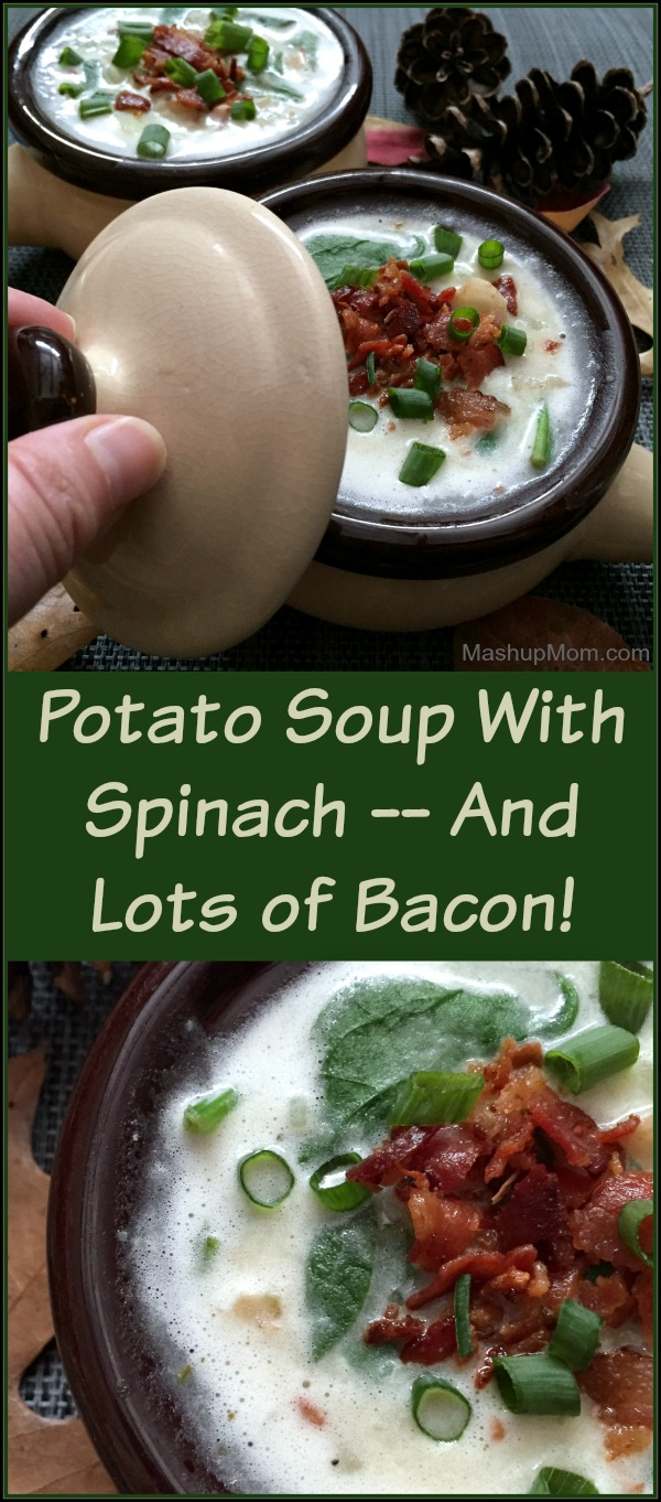 This easy and filling potato soup recipe is a bacon lover's dream! If you have a taste for potato soup, try Potato Soup with Spinach -- And Lots of Bacon!