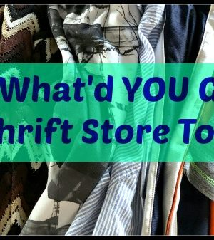 The 15th is Goodwill Discount Day — What did you buy at the thrift stores lately?