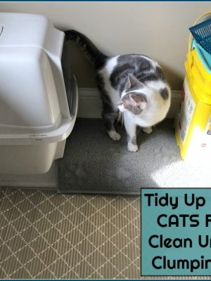 Tidy Up with TIDY CATS Free & Clean Unscented Clumping Litter at Target