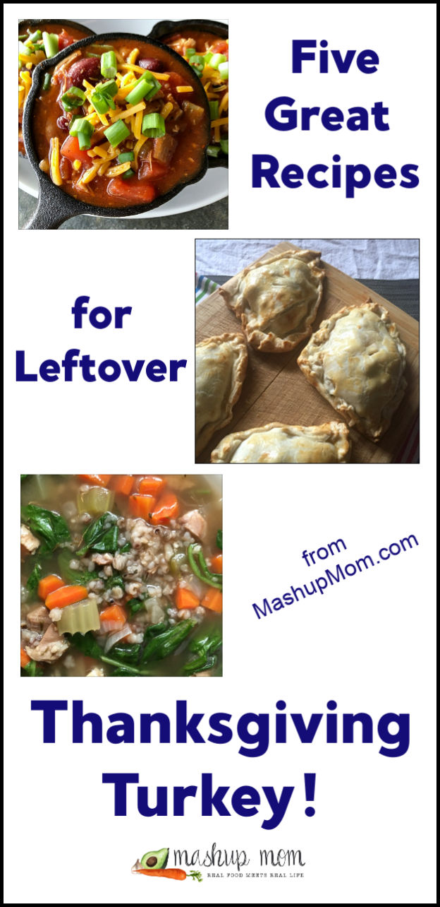 recipe ideas for leftover turkey