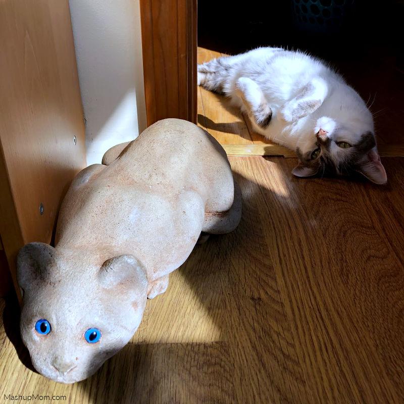 cat statue with cat