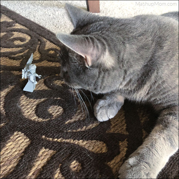 cat staring at a LEGO weeping angel