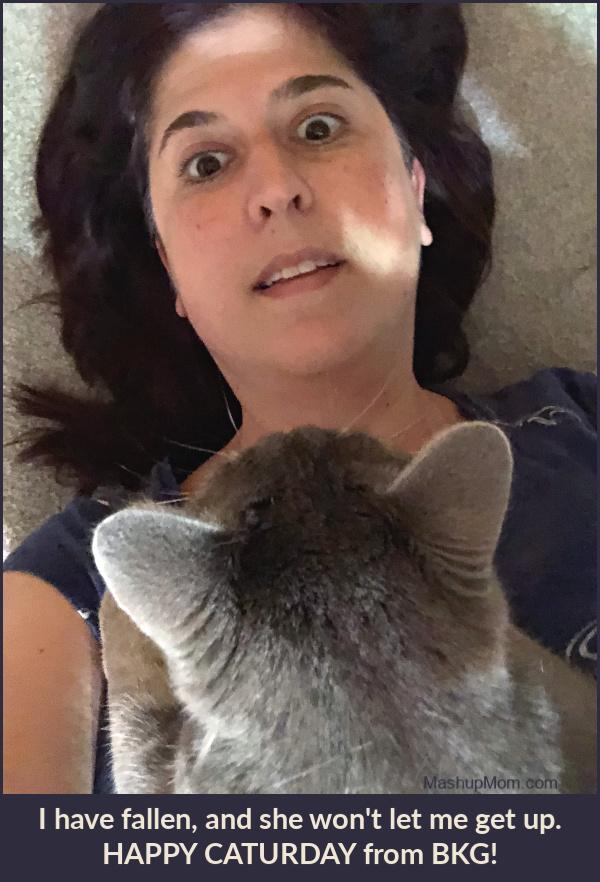 cat lying on me