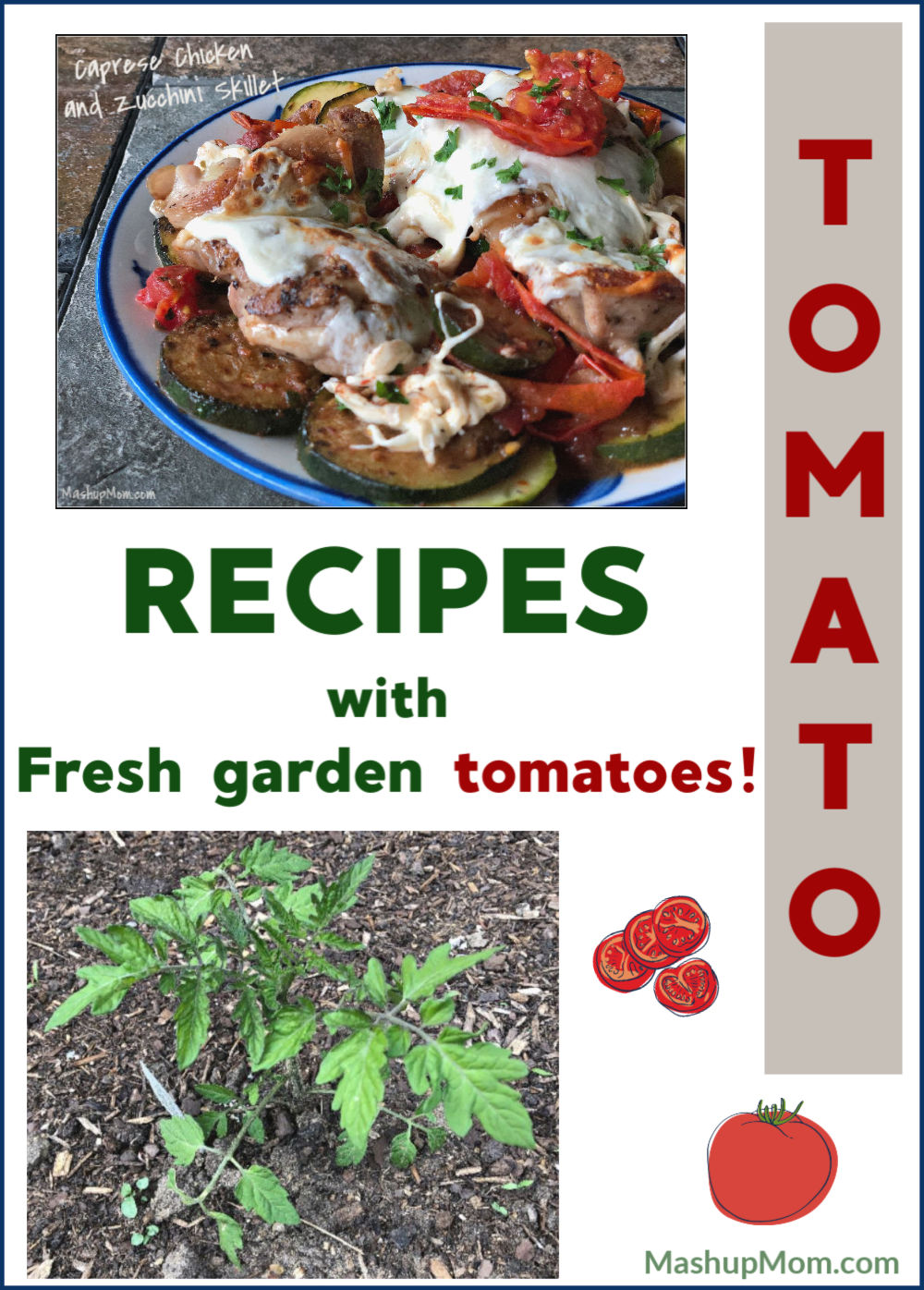 recipes with garden tomatoes