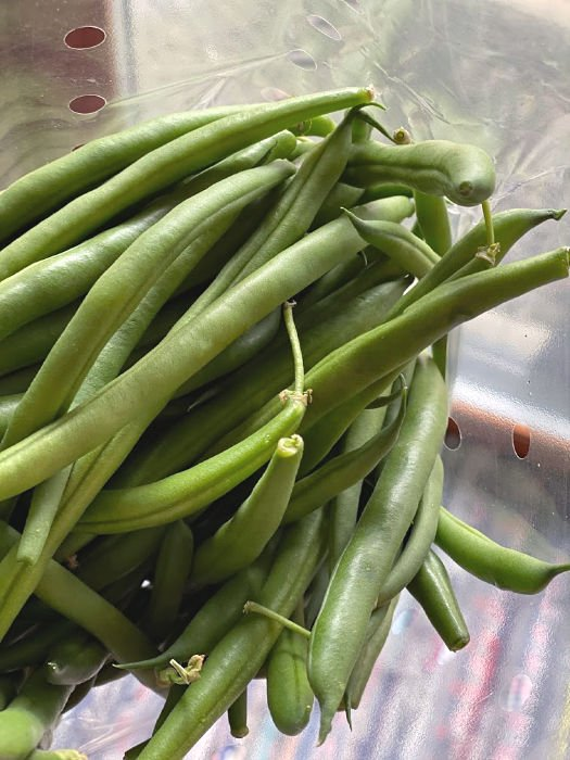 bag of fresh green beans
