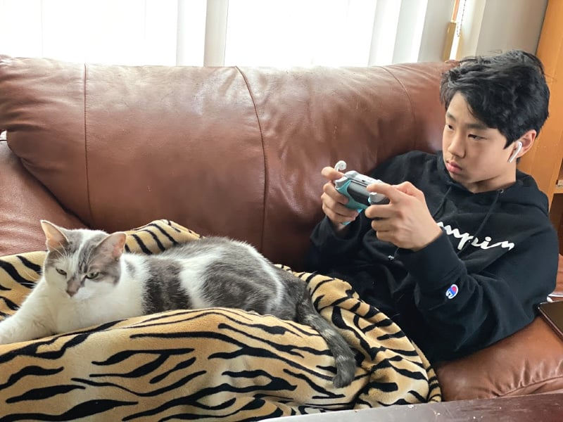 bad kitty lucy and middle school guy play Xbox