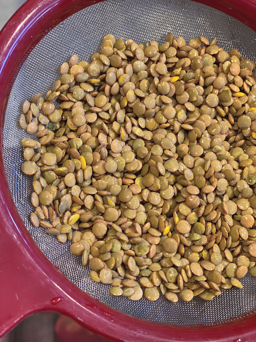 rinse the lentils in a fine mesh strainer