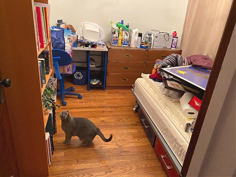cat supervised unpacking