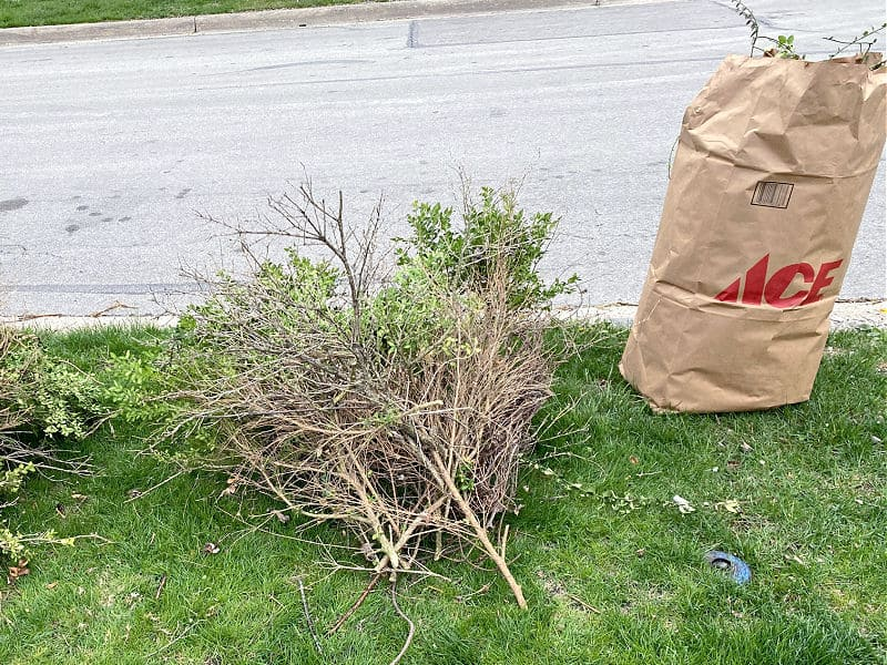 brush and yard waste on the curb