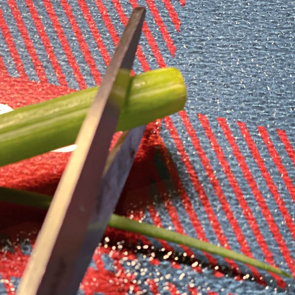 chop green onions with scissors