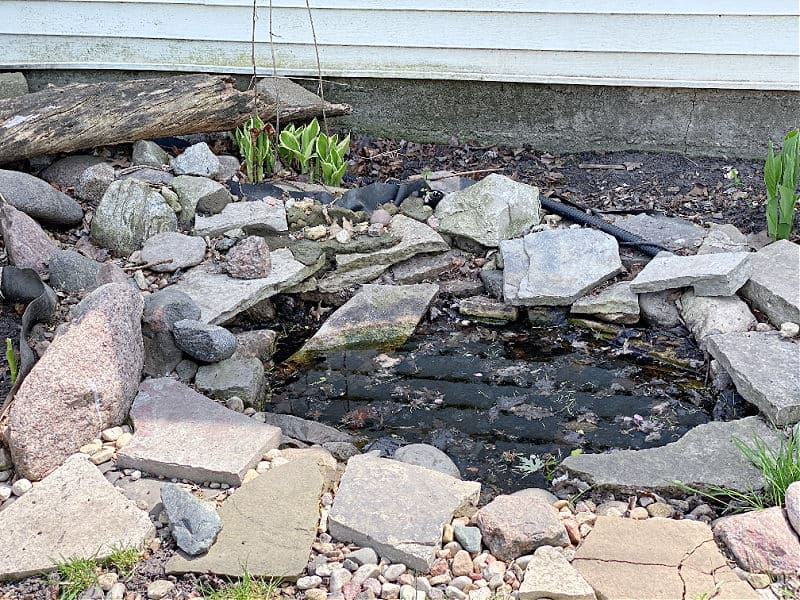 pond needs cleaning out