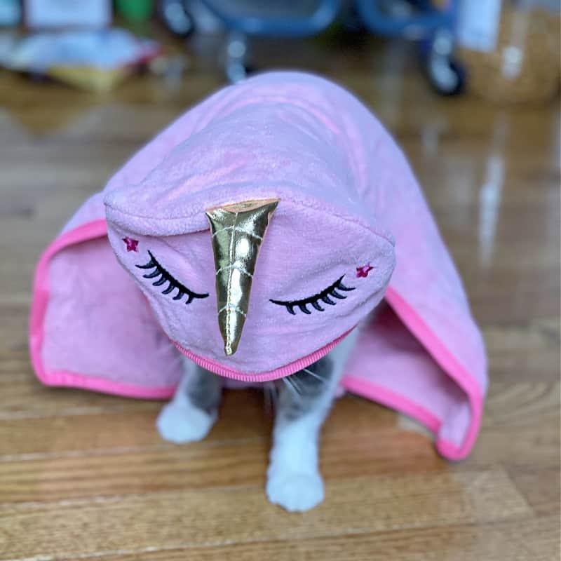 cat in unicorn towel