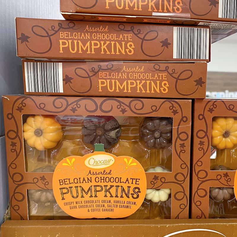 aldi chocolate pumpkins